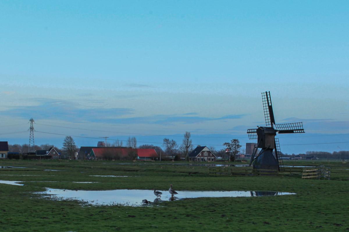 Week 09, Tia Nijhuis