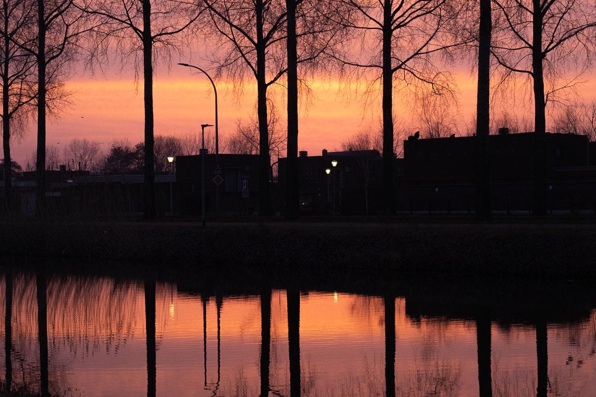 Week 09, Lizet van Oosterhout