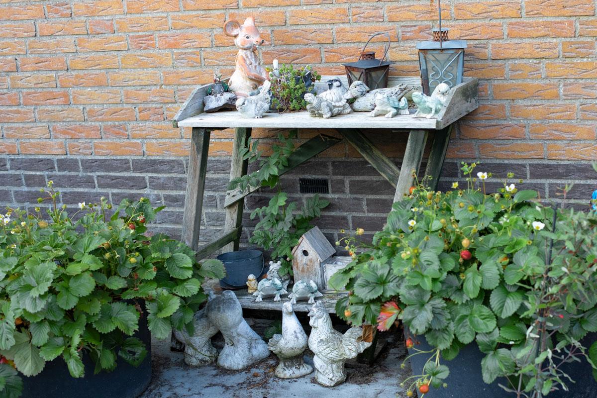 week_32_Jeanine van Dorp