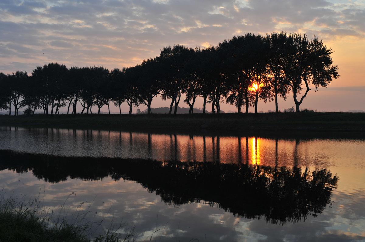 week_36_janberghout